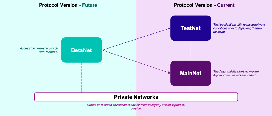 BetaNet, TestNet and MainNet